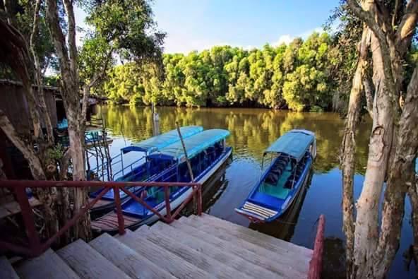 Bến tàu khu du lịch Tràm Chim