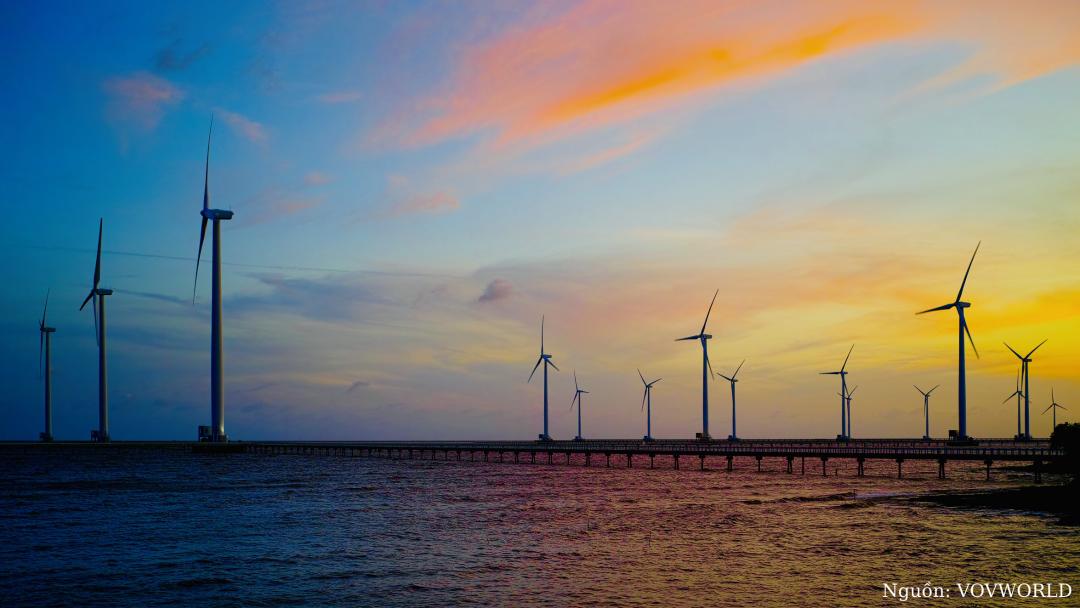 Nhà máy điện gió Bạc Liêu - ảnh đẹp Cần Thơ Bạc Liêu